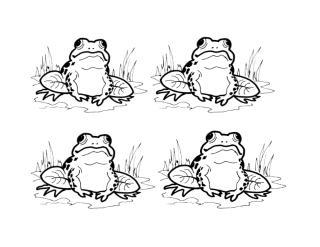 Frog 1.doc