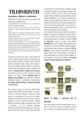 05-05-2017 TILEBYRINTH_REGLAS ILUSTRADAS dos columnas.pdf
