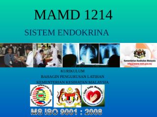 MAMD 1214 SIMPTOMATOLOGI ENDOKRINA.ppt