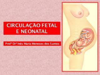 circulação fetal  2012.pdf