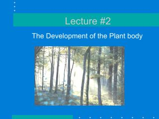 Lecture 2 - plant_anatomy_Devt of plant body2010.pdf