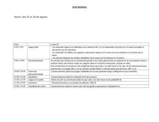 programcion_3agosto.doc